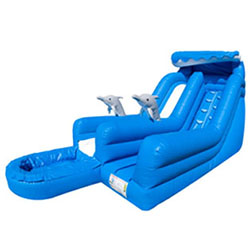 Dolphin Splash Waterslide